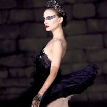 Blackswan_display_image
