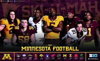 Minnesota_display_image