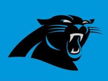 Logo-panthers_display_image
