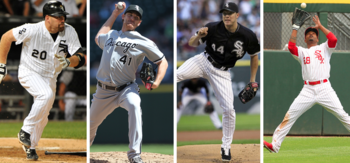 Chicagowhitesox_display_image