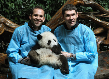 Sergio Garcia, Padraig Harrington in 'beary' happier times