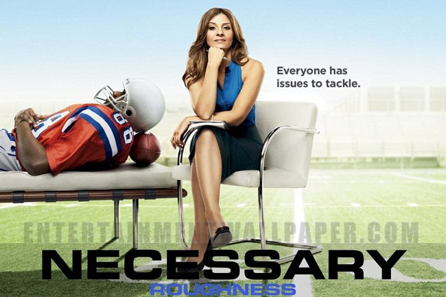 Tv-necessary-roughness01_crop_650