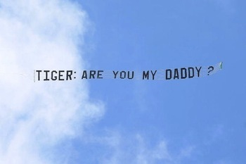 Tiger_display_image_display_image