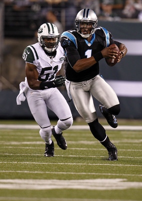 Newton will be counted on to help win a division crown for the Panthers