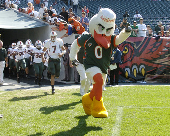 University of Miami mascot, an Ibis,  leads the teaam onto the field  against Temple at Lincoln Financial Field, October 15, 2005, in Philadelphia.  The Hurricanes defeated the Owls  34 - 3. (Photo by A. Messerschmidt/Getty Images) *** Local Caption ***