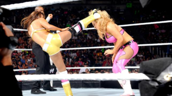 Layla delivers a kick to Natalya's head (Photo Credit: WWE.com)