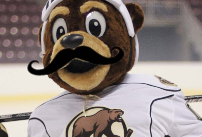 New-coco-hershey-bears-mo_crop_650x440
