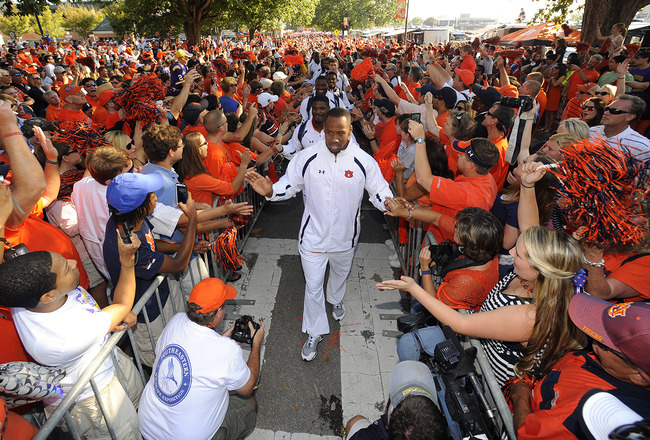 Tigerwalk_crop_650x440