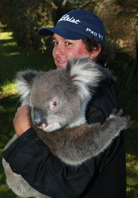 PERTH, AUSTRALIA - OCTOBER 18: Jason Dufner of the USA handles a Koala after completing his first round during round one of the Perth International at Lake Karrinyup Country Club on October 18, 2012 in Perth, Australia.  (Photo by Paul Kane/Getty Images)