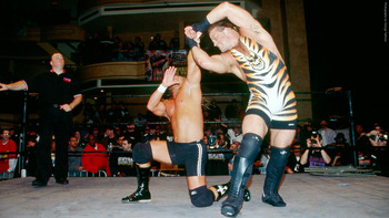 08_rvd_milestone_02hd_display_image