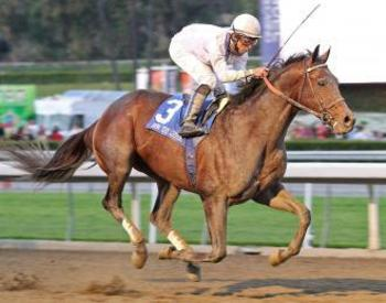 Ron The Greek (image via drf.com)