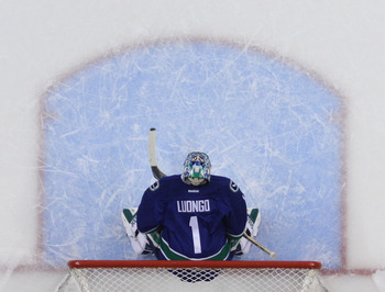 Roberto Luongo of the Vancouver Canucks.