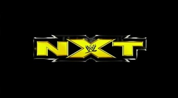 photo from wrestlingupdateonline.com, logo copyright to WWE