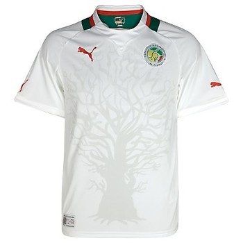 Senegal-home-shirt-2012-13_display_image
