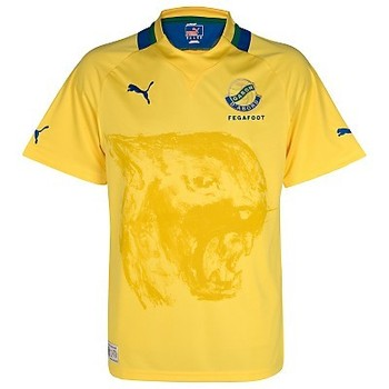Gabon-home-shirt-2012-13_display_image