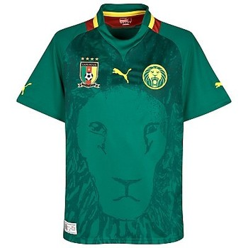 Cameroon-home-shirt-2012-13_display_image