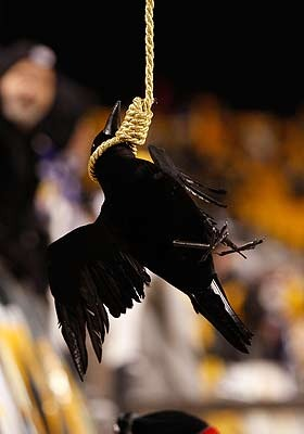 Steelers fans hanging a Raven. Photo courtesy of http://msn.foxsports.com/nfl/lists/Top_10_hottest_current_NFL_rivalries