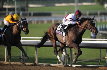 My Miss Aurelia was a game second to Royal Delta in the Ladies' Classic.
