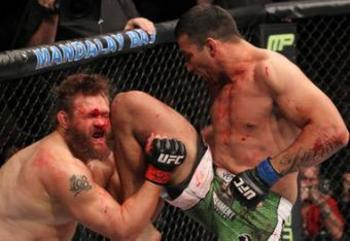 Ufc143_10_werdum_vs_nelson_019_large_original_crop_exact1_display_image