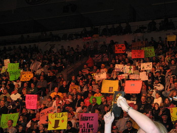 Wwefans1_display_image