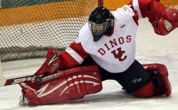 Photo by David Moll, http://www.canadawest.org/news/2012/1/27/WHOCKEY_0127122121.aspx