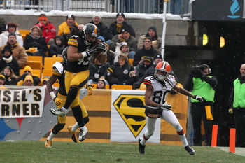 An interception against the Browns was a rare highlight in Troy Polamalu's 2012 season.