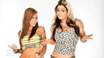 Will AJ Lee or Kaitlyn be WWE Divas Champion in 2013? (photo courtesy of fanpop.com)