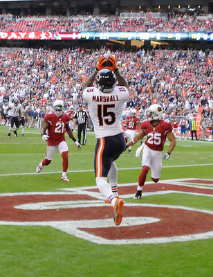 Brandon Marshall scored a career-high 11 touchdowns this season.