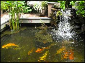 Image courtesy of exteriorconceptsonline.com [This is a sample pond. Not Vick's actual pond.]