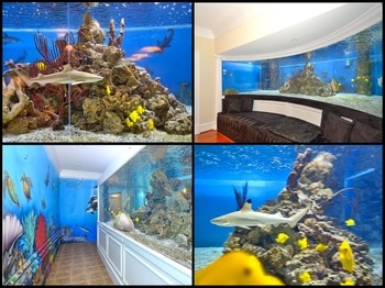 Images courtesy of Realtor.com [Arenas' actual tank]