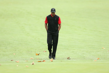 Tiger seems poised to win a major championship in 2013
