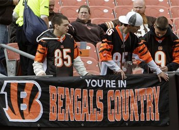 Bengalsfans4_display_image