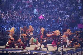 Diva_battle_royal_at_wrestlemania_25_21_display_image
