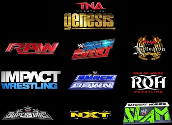 logos copyright to their respective companies (WWE, TNA Wrestling, ROH Wrestling)