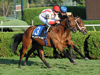 Photo: Coglianese Photos
