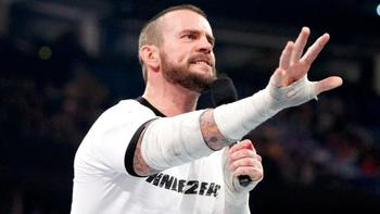 CM Punk (Courtesy of WWE.com)