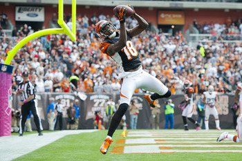 Green and the 10-win Cincinnati Bengals should compete for the AFC North title next season.