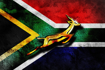 Love for the Springboks has spread across the rainbow nation.
