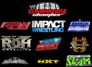 Logos copyright to their respective companies (WWE, TNA Wrestling, Ring of Honor)