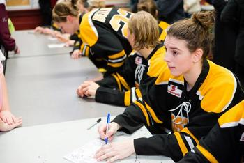 Image obtained from: http://www.hilary-knight.com/2013/02/hilary-as-a-boston-blade-cwhl/