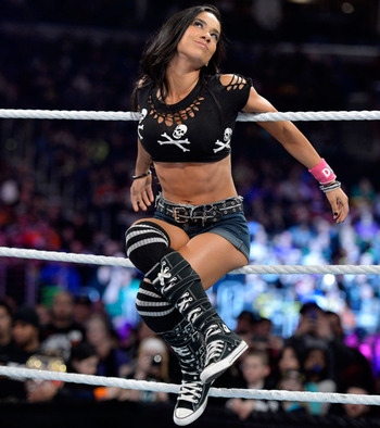 AJ Lee (photo courtesy of WWE.com)