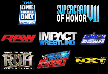 Logos copyright to respective companies (WWE, TNA, ROH)