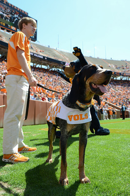 Apr 20, 2013; Knoxville, TN, USA; Tennessee Volunteers mascot Smokey X during the first half of the spring Orange and White game at Neyland Stadium. Mandatory Credit: Randy Sartin-USA TODAY Sports