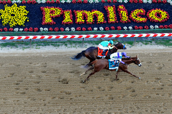 Just two weeks after the Derby, the top contenders will head to Pimlico.