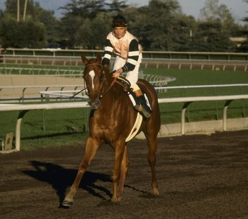 Affirmed and Steve Cauthen