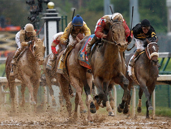 Orb will try to repeat in the Preakness