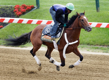 Goldencents trains towards the Preakness