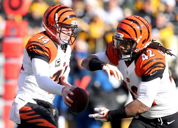 The Bengals have been steadily improving.