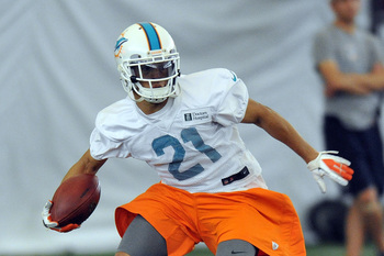 Brent Grimes is just one of many new faces in the Dolphins secondary.