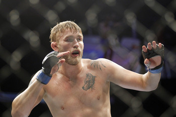 Alexander Gustafsson is currently the top contender.